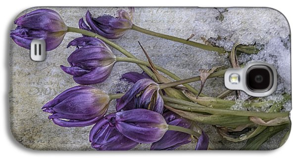 Spring Greening Galaxy S4 Cases - Tulips Frozen Galaxy S4 Case by Terry Rowe