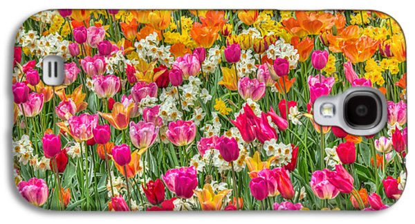 Green Galaxy S4 Cases - Tulips in Bloom Galaxy S4 Case by Nadia Sanowar
