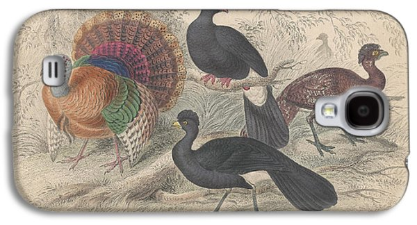 Botanical Galaxy S4 Cases - Turkeys Galaxy S4 Case by Oliver Goldsmith