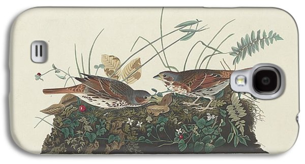 Sparrow Galaxy S4 Cases - Two-Colored Sparrow Galaxy S4 Case by John James Audubon