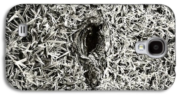 Tree Roots Photographs Galaxy S4 Cases - Untitled 20150807 Galaxy S4 Case by Marco Oliveira