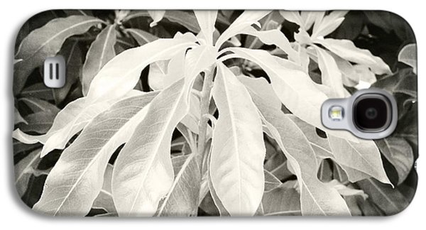 Nature Abstract Galaxy S4 Cases - Untitled 20150903 Galaxy S4 Case by Marco Oliveira
