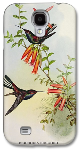 Urochroa Bougieri Galaxy S4 Case by John Gould