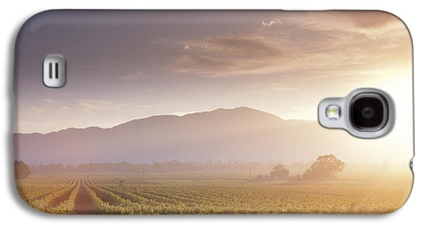 Usa, California, Napa Valley, Vineyard Galaxy S4 Case by Panoramic Images