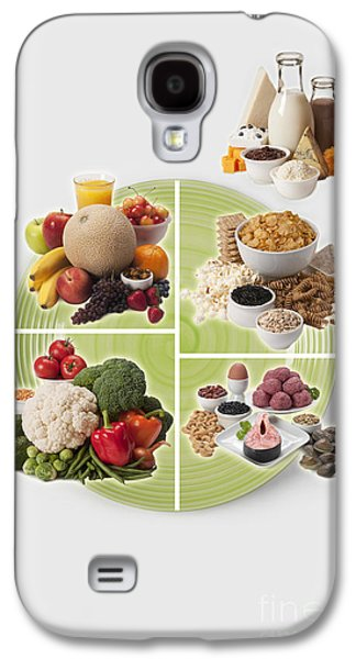 Michelle Obama Galaxy S4 Cases - Usda Myplate Galaxy S4 Case by George Mattei