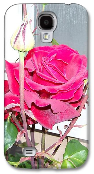 Digital Pyrography Galaxy S4 Cases - Velvet Red Rose Of Sharon Galaxy S4 Case by Laurie Kidd