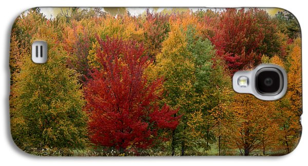 Change Paintings Galaxy S4 Cases - Vermont Drive Galaxy S4 Case by Mindy Sommers