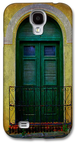 Screen Doors Galaxy S4 Cases - Vintage Arched Door Galaxy S4 Case by Perry Webster