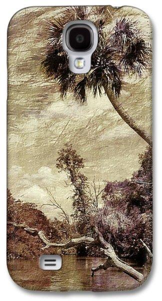 Landscape Acrylic Prints Galaxy S4 Cases - Vintage Florida Landscape Galaxy S4 Case by Sheri McLeroy