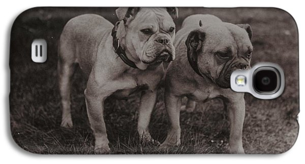 Boxer Dog Galaxy S4 Cases - Vintage Two Bulldogs Galaxy S4 Case by Gillham Studios
