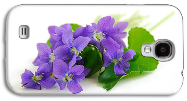 Botanical Galaxy S4 Cases - Violets on white background Galaxy S4 Case by Elena Elisseeva
