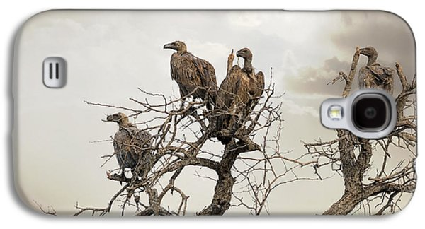 Vultures In A Dead Tree.  Galaxy S4 Case by Jane Rix