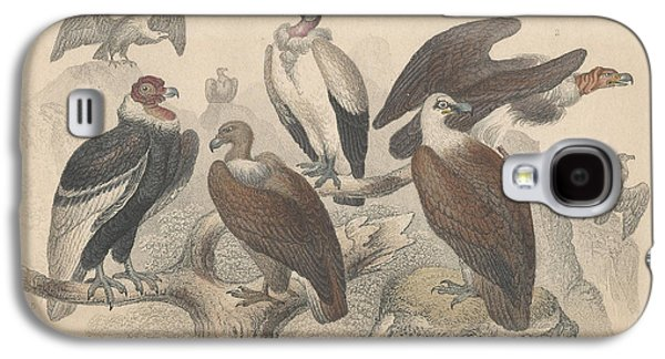 Botanical Galaxy S4 Cases - Vultures Galaxy S4 Case by Oliver Goldsmith