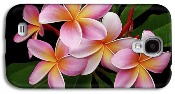 Wailua Sweet Love Texture Galaxy S4 Case by Sharon Mau