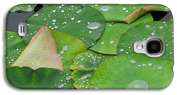 Green Galaxy S4 Cases - Waterdrops on lotus leaves Galaxy S4 Case by Silke Magino