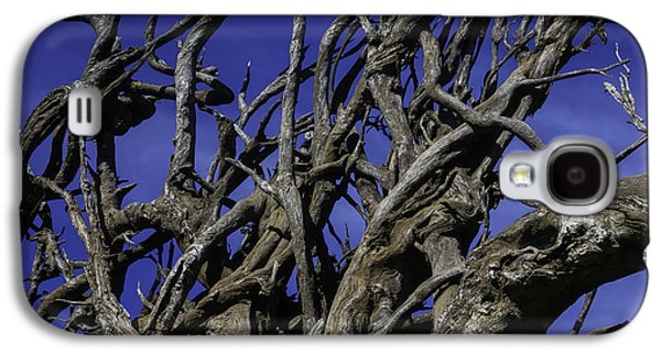 Weathered Tree Roots Galaxy S4 Case by Garry Gay