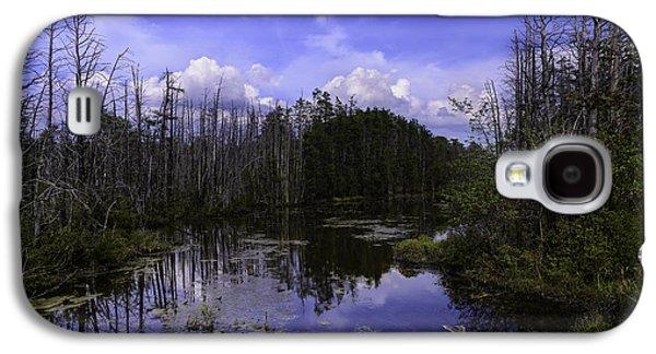 Webb Cedar Swamp Blog Galaxy S4 Case by Louis Dallara