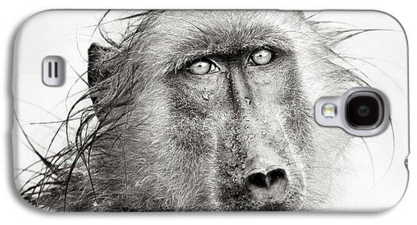 Wet Galaxy S4 Cases - Wet Baboon portrait Galaxy S4 Case by Johan Swanepoel