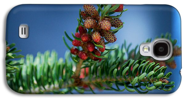 Becky Photographs Galaxy S4 Cases - #wetootellstories Galaxy S4 Case by Becky Furgason