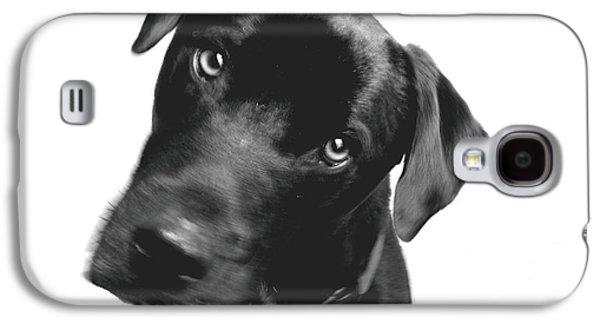 Labrador Digital Galaxy S4 Cases - What Galaxy S4 Case by Amanda Barcon