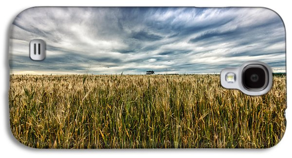 Agricultural Galaxy S4 Cases - Wheat Field Galaxy S4 Case by Stylianos Kleanthous