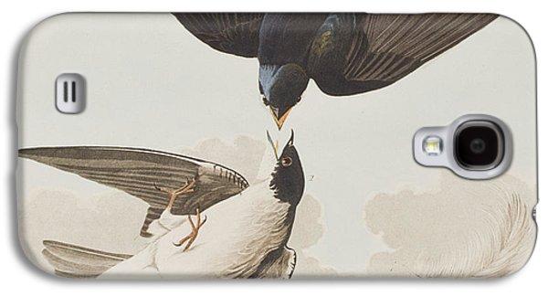 Swallow Galaxy S4 Cases - White-bellied Swallow Galaxy S4 Case by John James Audubon