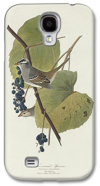 Feather Drawings Galaxy S4 Cases - White-Crowned Sparrow Galaxy S4 Case by John James Audubon