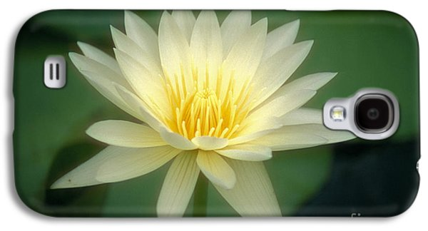Nature Center Pond Galaxy S4 Cases - White Lily Galaxy S4 Case by Ron Dahlquist - Printscapes