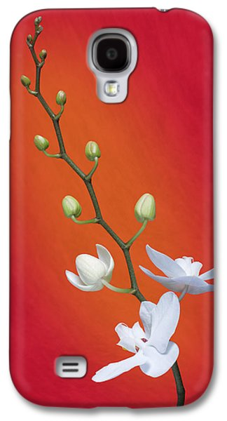 Botanical Galaxy S4 Cases - White Orchid Buds on Red Galaxy S4 Case by Tom Mc Nemar