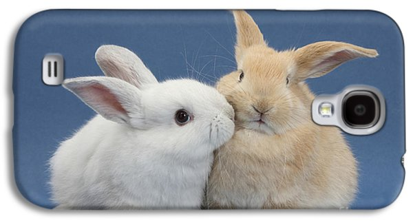 White Rabbit And Sandy Rabbit Galaxy S4 Case by Mark Taylor
