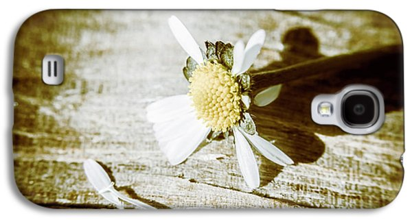 White Summer Daisy Denuded Of Its Petals Galaxy S4 Case by Jorgo Photography - Wall Art Gallery