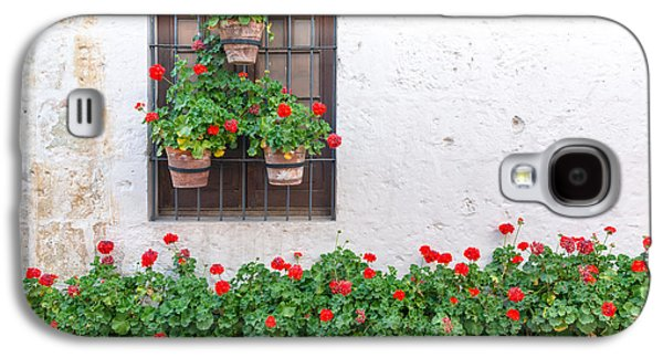 White Wall And Red Flowers Galaxy S4 Case by Jess Kraft