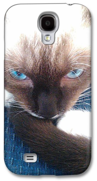 White Whiskers Siamese Cat Galaxy S4 Case by Becky Burt