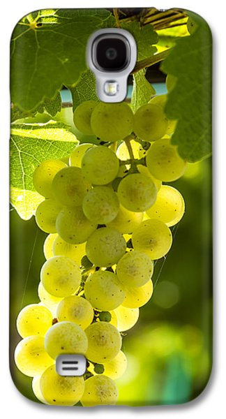 White Wine Grapes Lit By The Sun Galaxy S4 Case by Teri Virbickis
