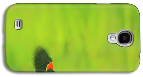 Aimelle Prints Galaxy S4 Cases - Who are you looking at Galaxy S4 Case by Aimelle