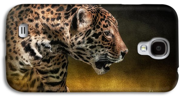 Who Goes There Galaxy S4 Case by Lois Bryan