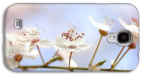 Wild Cherry Blossom Galaxy S4 Case by Jacky Parker
