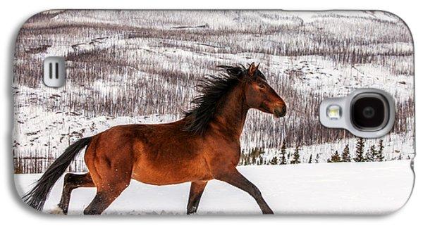 Wild Horse Galaxy S4 Case by Todd Klassy