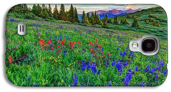 Wildflower Hill Galaxy S4 Case by Scott Mahon