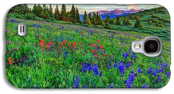Fort Collins Galaxy S4 Cases - Wildflower Hill Galaxy S4 Case by Scott Mahon