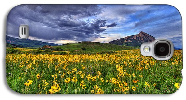 Fort Collins Galaxy S4 Cases - Wildflower Storm Galaxy S4 Case by Scott Mahon