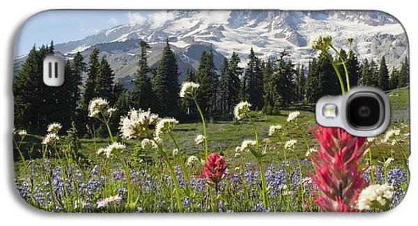 Snow Capped Galaxy S4 Cases - Wildflowers In Mount Rainier National Galaxy S4 Case by Dan Sherwood
