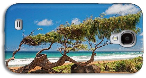 Wind Blown Tree Galaxy S4 Case by Brian Harig