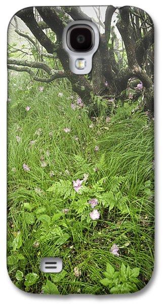 Gnarly Galaxy S4 Cases - Windblown Grassy Craggy Galaxy S4 Case by Rob Travis
