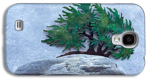 Granite Reliefs Galaxy S4 Cases - Windswept Finagashi Bonsai with Main Beachstone Galaxy S4 Case by Vanessa Williams