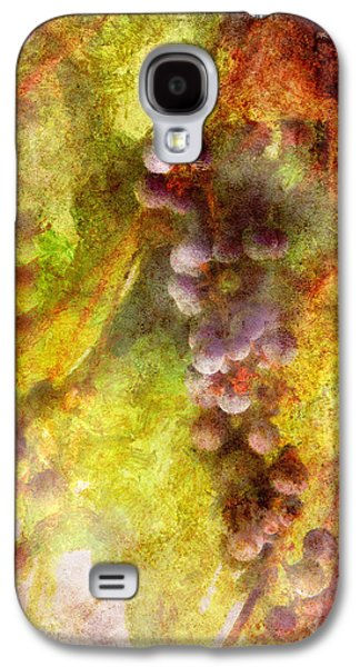 Vino Photographs Galaxy S4 Cases - Wine - Grapes Galaxy S4 Case by Mike Savad