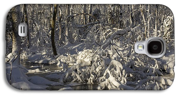 Woodlands Scene Galaxy S4 Cases - Winter at Borden Brook Galaxy S4 Case by Andrew Pacheco