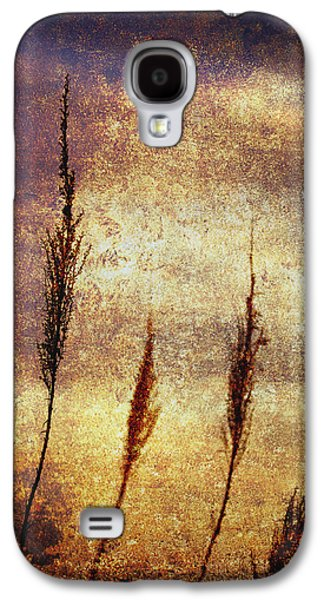 Gold Galaxy S4 Cases - Winter Gold Galaxy S4 Case by Skip Nall