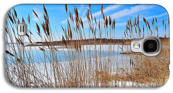 Catherine Reusch Daley Galaxy S4 Cases - Winter in the Salt Marsh Galaxy S4 Case by Catherine Reusch  Daley