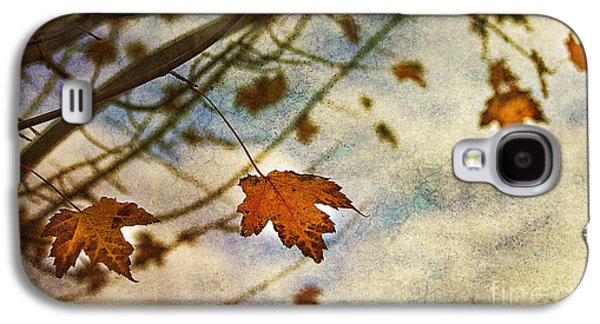 Fall Leaves Galaxy S4 Cases - Winter On The Way Galaxy S4 Case by Rebecca Cozart